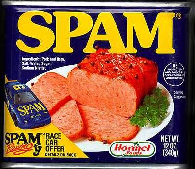 How to delete spam comments in bulk WordPress